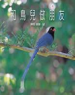和鳥兒做朋友